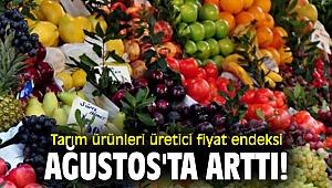 Tarım ürünleri üretici fiyat endeksi Ağustos'ta arttı!