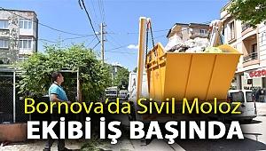 Bornova'da Sivil Moloz Ekibi iş başında