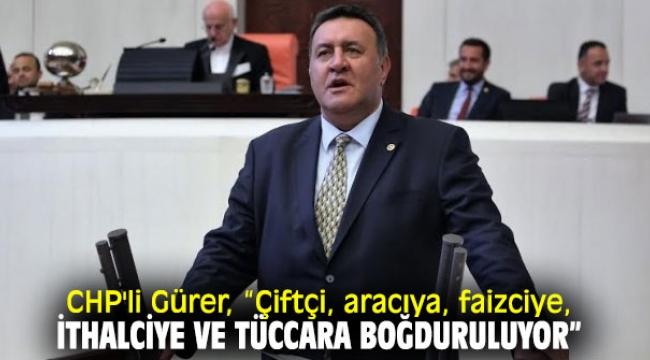 CHP'li Gürer, çiftçi ve besicinin sorunlarına değindi