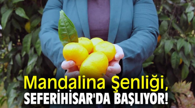 Mandalina Şenliği, Seferihisar'da başlıyor!