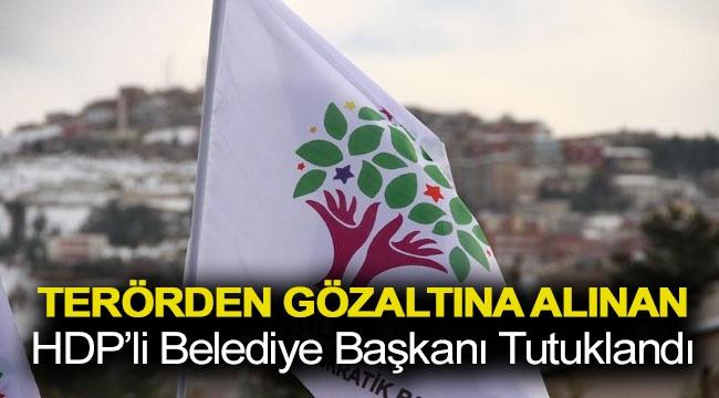 Terörden gözaltına alınan HDP'li belediye başkanı tutuklandı