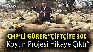 CHP'li Gürer:''Çiftçiye 300 koyun projesi hikaye çıktı''