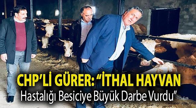 """Gürer: """"İthal hayvan hastalığı besiciye büyük darbe vurdu"""""""