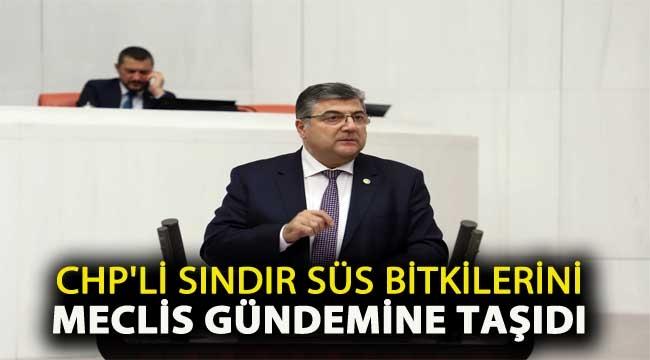 CHP'li Sındır Süs Bitkilerini Meclis Gündemine Taşıdı