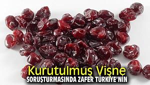 Kurutulmuş Vişne Soruşturmasında Zafer Türkiye'nin!