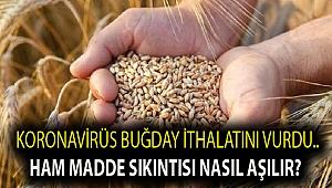 Koronavirüs buğday ithalatını vurdu.. Ham madde sıkıntısı nasıl aşılır?