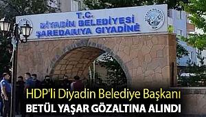 HDP'li Diyadin Belediye Başkanı Betül Yaşar gözaltına alındı