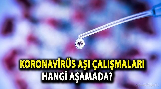 Koronavirüs aşı çalışmaları hangi aşamada?