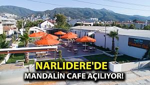 Narlıdere'de Mandalin Cafe açılıyor!