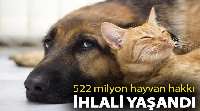 522 milyon hayvan hakkı ihlali yaşandı