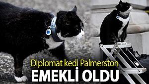 Diplomat kedi Palmerston emekli oldu