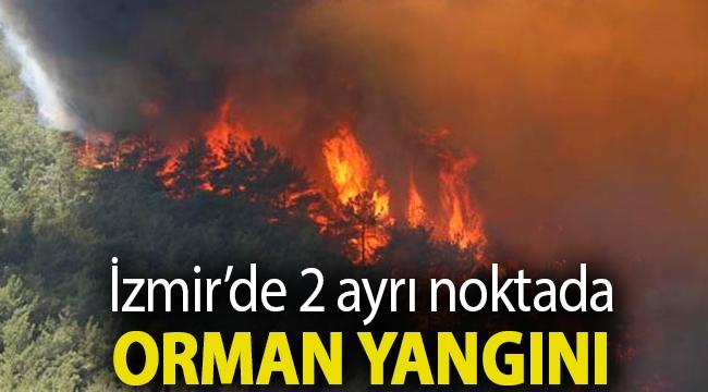 İzmir'de 2 ayrı noktada orman yangını