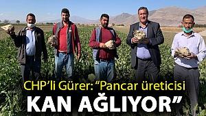 """Gürer: """"Pancar üreticisi kan ağlıyor"""""""
