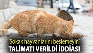 CHP'li İlgezdi'den, Topkapı Sarayı'nda 'Sokak hayvanlarını beslemeyin' talimatı verildi iddiası