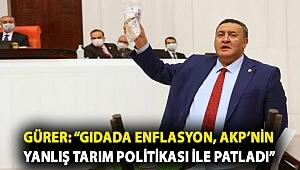 """Gürer: """"Gıdada enflasyon, AKP'nin yanlış tarım politikası ile patladı"""""""
