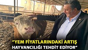 """CHP'li Gürer: """"Yem fiyatlarındaki artış hayvancılığı tehdit ediyor"""""""