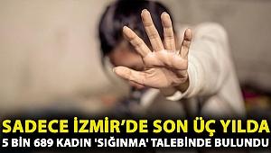 Sadece İzmir'de son üç yılda 5 bin 689 kadın 'sığınma' talebinde bulundu