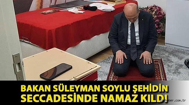 Bakan Süleyman Soylu şehidin seccadesinde namaz kıldı