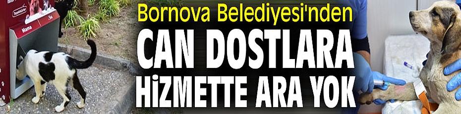 Bornova'da can dostlarına hizmette ara yok