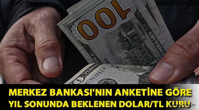 Merkez Bankası'nın anketine göre yıl sonunda beklenen dolar/TL kuru