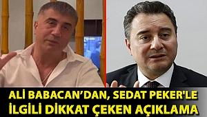 Ali Babacan'dan, Sedat Peker'le ilgili dikkat çeken açıklama