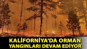 Kaliforniya'da orman yangınları devam ediyor