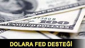 Dolara Fed desteği